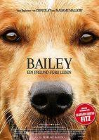 2/28:Bailey - Ein Freund fürs Leben